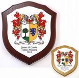 Family Crests Coat of Arms Combined 7 inch Shield Plaque PERSONALISED, ref FCMDP
